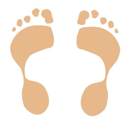 flesh: two foot prints - vector Illustration