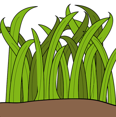 grass blades: cartoon drawing of blades of green grass - vector Illustration
