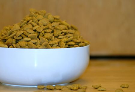 heaping bowl or dish of pet food or dog food  photo