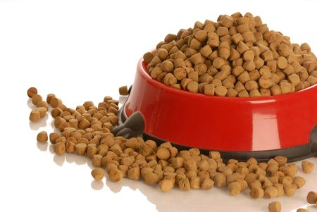 bowl of dog kibble overflowing in dog dish isolated on white background   Stock Photo
