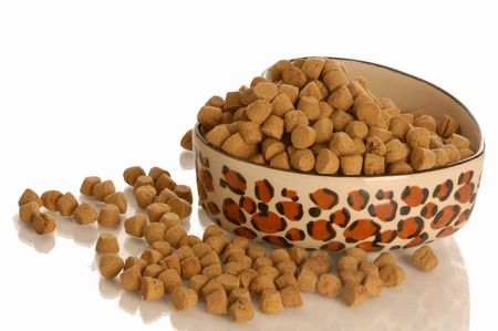 kibble: bowl of dog kibble in a heart shaped dog dish isolated on white background