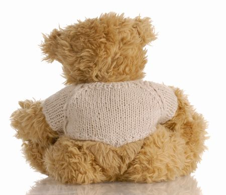 turn away: teddy bear looking away with reflection on white background