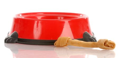 rawhide: red pet food dish with rawhide bone