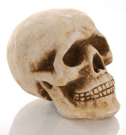 reflection: skull skeleton with reflection isolated on white background Stock Photo