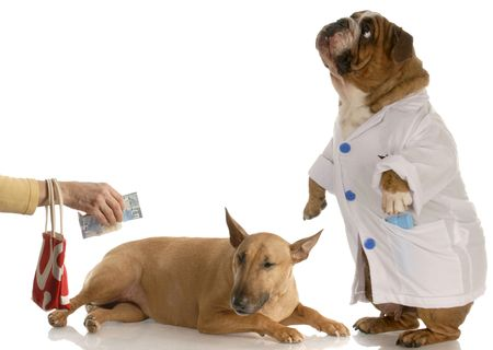 doctor money: person paying vet or doctor for expensive bill Stock Photo