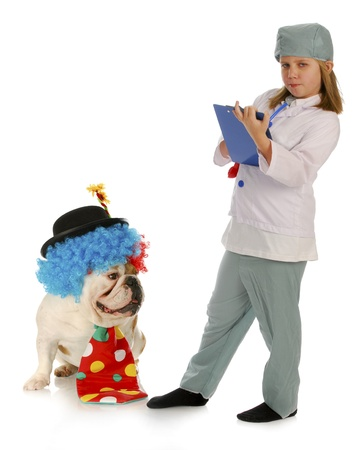 diagnosing: veterinary care - child vet diagnosing silly problem with bulldog
