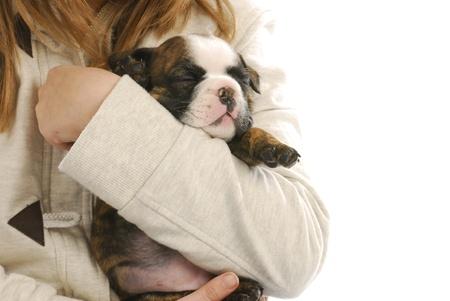 holding close: child holding puppy - girl hanging on to english bulldog puppy Stock Photo