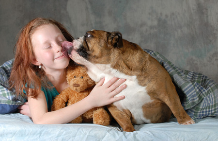 brindle: girl and her dog - pre teenage girl ready for cuddling with her dog  Stock Photo