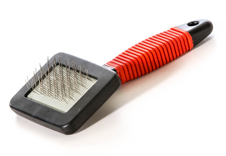 grooming product: dog brush isolated on white  Stock Photo