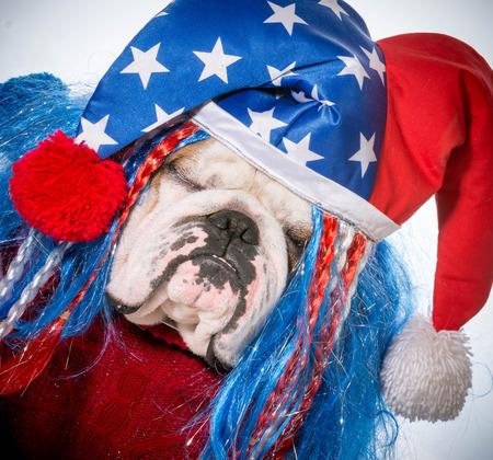 sam: american dog - english bulldog wearing patriotic hat Stock Photo