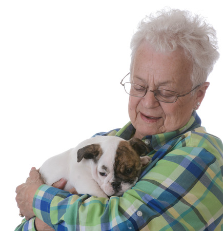 gracious: senior woman with bulldog puppy on white background