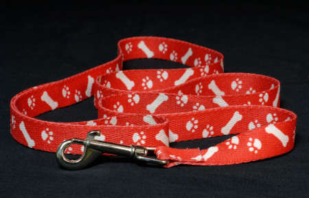 behave: red dog leash with paw prints on black background Stock Photo