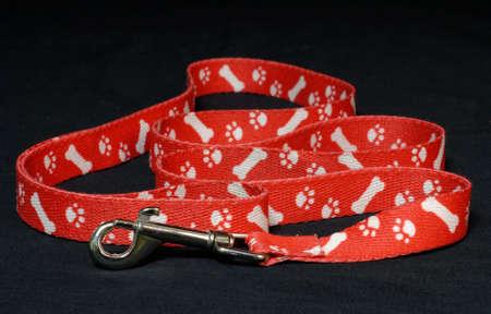dog on leash: rojo correa de perro con pata impresiones sobre fondo negro
