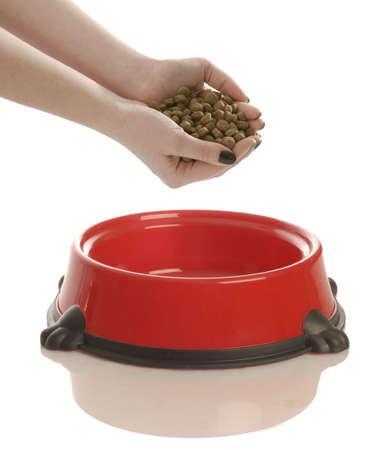 perro comiendo: persona poniendo mano llena de comida para perros en un plato Foto de archivo