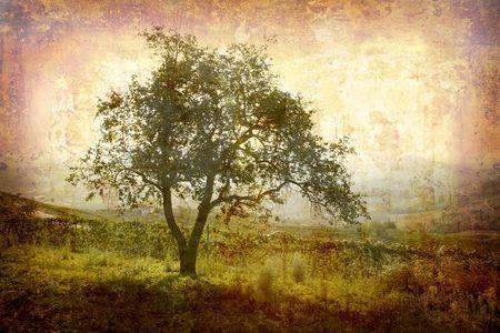 piedmont: Postcard from Italy. - Landscape - Piedmont. Stock Photo