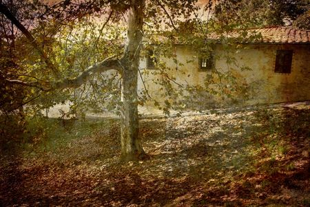 Postcard from Italy. - Autumn Lucca, Tuscany. Stock Photo - 1928886