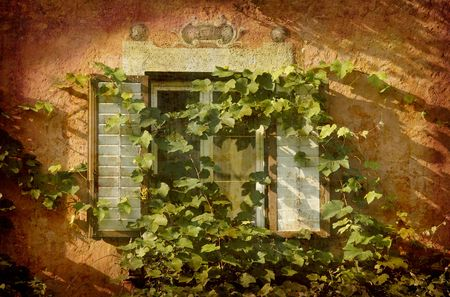Artistic work of my own in retro style - Postcard from Italy. - Window with ivy - Chiuso