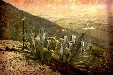 Artistic work of my own in retro style - Postcard from Italy. - Agave with view - Tuscany.