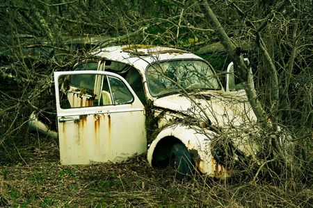 cross processed: Abandoned scrap car left in the nature near the Norwegian border - Sweden. From the series Scrap in the wood. Cross processed.