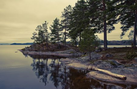 cross processed: Retro tranquillity by a Swedish lake at summertime. Cross processed. Stock Photo