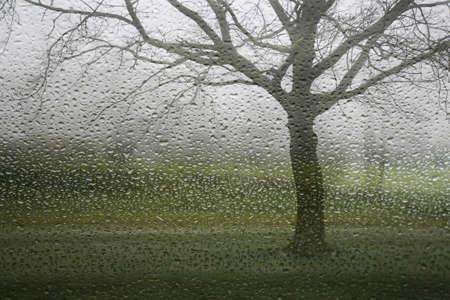 A rainy winter day seen through a wet window , Denmark. photo
