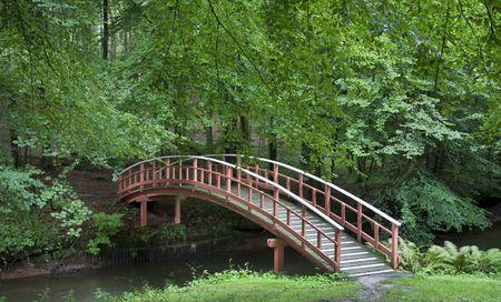 vlonder: Nice oud Deens houten brug in park op zomer tijd.