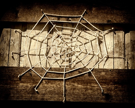 Artistic and conceptual spider web. photo