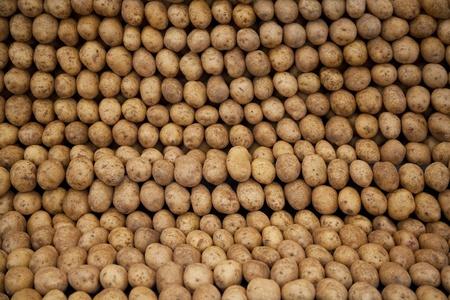 raw potato: Pile of fresh potatoes found in a marketplace - Istanbul, Turkey.