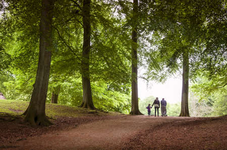 Happy family walk in a Danish forest at springtime. photo