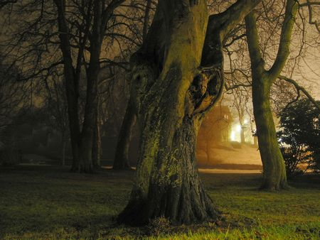 Foggy night in the park with a spooky house behind the trees. Stock Photo