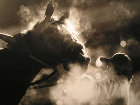 Winning trotting horse in Munich, Germany just after the race. BW analog capture... silvergrains to be seen. Stock Photo