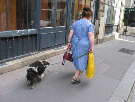 Woman with dog - Paris, France. Stock Photo