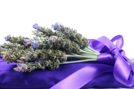 herbalism: A bunch of fresh lavender tied with ribbon on lavender filled satin pillow
