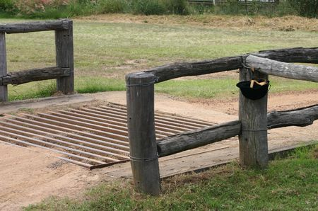 cattle grid: metal cattle grid  grate on farm