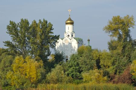 principled: church in trees