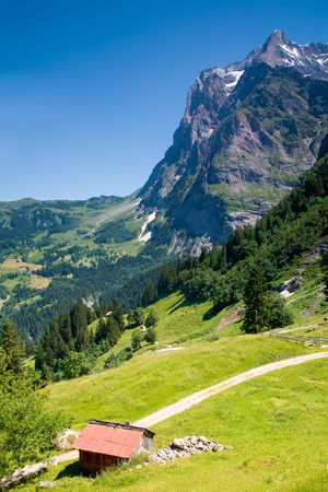 canton: Grindelwald in the Canton of Bern in Switzerland