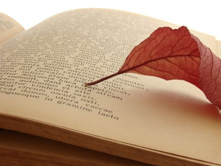 poem: autumnal leaf on the page of ancient poem Stock Photo