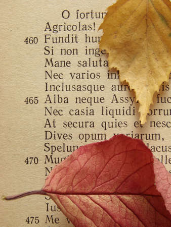 virgil: ancient poem page with autumnal colorful leaves                                Stock Photo