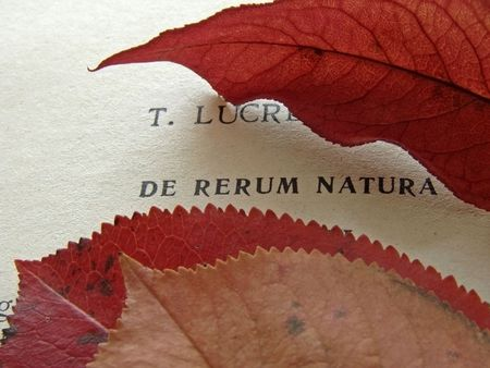title page: antigua p�gina de t�tulo fragmento