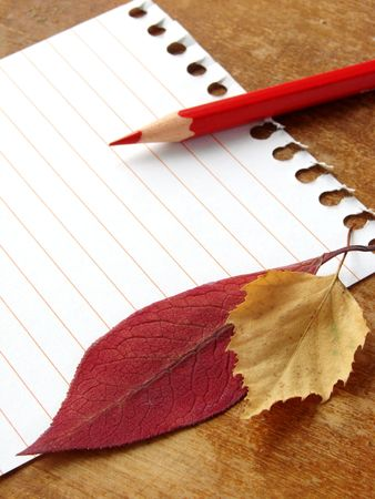summarize: single notepad page with red pencil and autumnal leaves