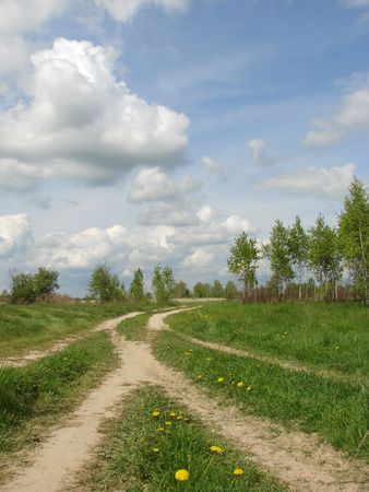 spring landscape with country road fork and cloudy sky Stock Photo - 3074571