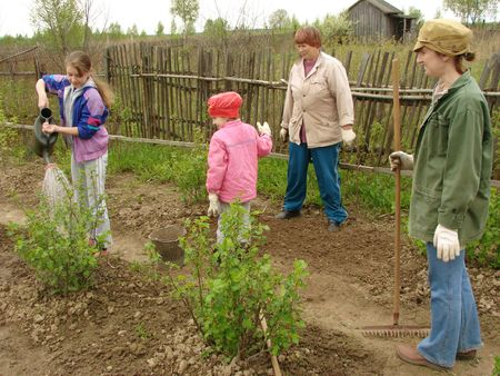 family working at the small rural farm                         photo