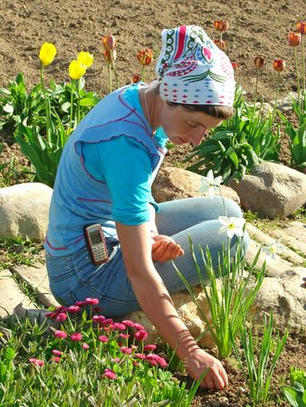 woman with seeds in hand among the flowers at the rural farm                                photo