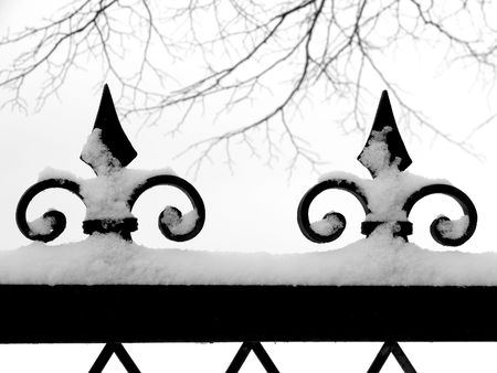 frost bound: metal decorative fence fragment with tree branches under the snow                                 Stock Photo