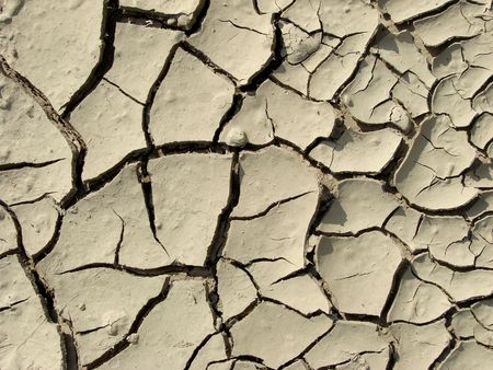 dry ground texture with deep fissures                                photo