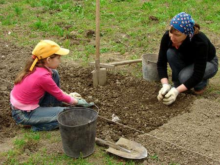 siembra: madre e hija de preparaci�n de cama vegetal para plantar juntos