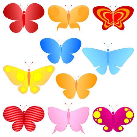 butterfly cartoon: colorful butterflies set