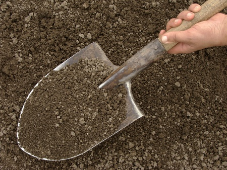 hand holding spade with soil Stock Photo - 9560929