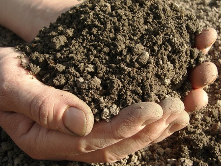 soil texture: hands with soil