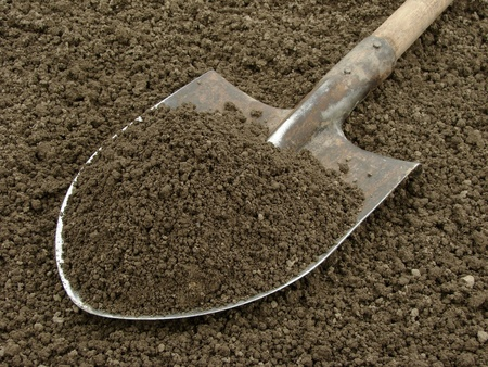 spade with heap of soil                                photo